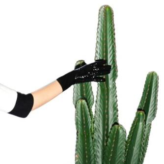 #cactus #foodporn #studio57 #studio57gallery #event