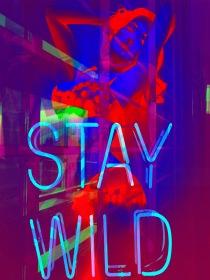 """""""STAYWILD"""" © Peggy Mella"""